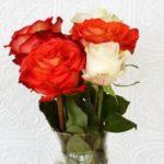 Как сохранить розы в букете подольше. Предлагаем варианты